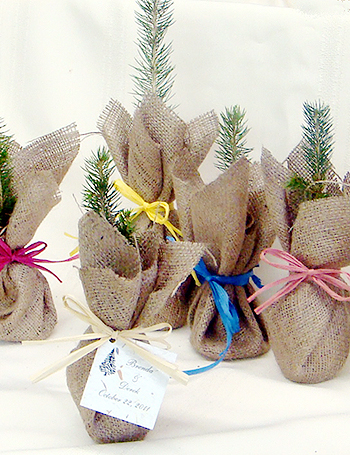 Wedding Favors Trees Green Party Favors Tree Favors